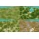 Touffes d'herbe moyenne printemps MINISOCLES