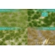 Touffes d'herbe moyenne été MINISOCLES