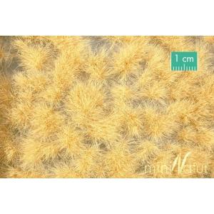 Touffes d'herbe haute beige paille