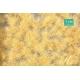 Touffes d'herbe haute beige paille MINISOCLES