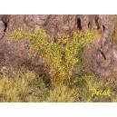 Arbustes 35-45 mm Fleurs ocres jaunes (x5)