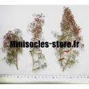 Arbres miniatures (X3)