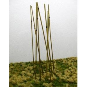 Bambous naturels (x50)