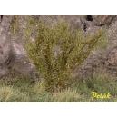 Arbustes 35-45 mm Vert Savane (x5)