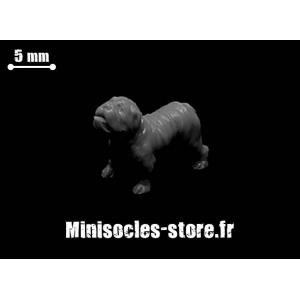 Bouledogue Echelle 28-32mm