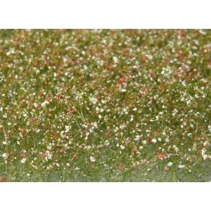 Fleurs des prés blanches et rouges