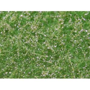 Fleurs des prés violet clair