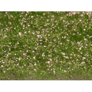 Fleurs des prés roses
