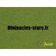 Herbe statique moyenne Vert Vif