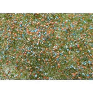 Fleurs des prés rouges et bleues