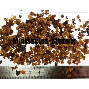 Feuilles d'Automne teintées (10mL, Marrons)