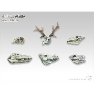 Crânes d'animaux 28mm