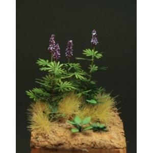 Photo Découpe Papier Lupin et mauvaises herbes