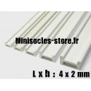Tige pour poutre métallique 4x2mm