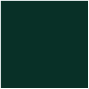 Vert Sombre, Dark Green (17mL)