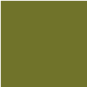 Camouflage Green (17mL)