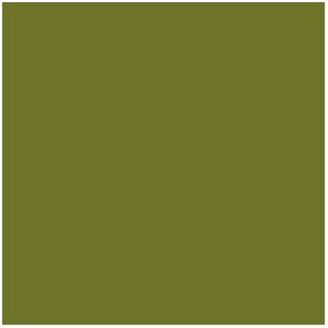 Camouflage Green, Vert Camouflage (17mL)