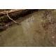 Eau marécageuse (WATER GEL SWAMP GREEN, 250mL)