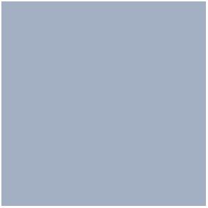 Wolf Grey, Gris Loup (17mL)