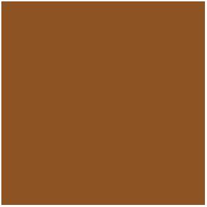 Peinture Métallique : Bright Bronze, Bronze Clair (17mL)