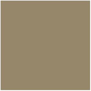 Kaki (17mL)