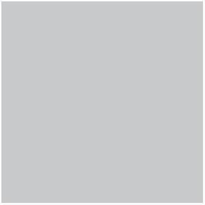 Lavis Gris Pâle, Pale Grey Wash (17mL)