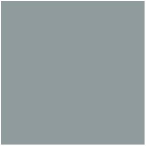 Peinture Métallique : Silver, Argent Elfique (17mL)