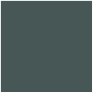 Peinture Métallique : Gunmetal (17mL)