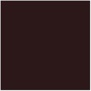Encre : Smokey Ink (17mL)