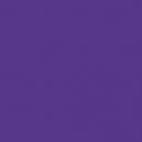 Encre : Violet (17mL)