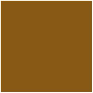 Encre Marron, Brown Ink (17mL)