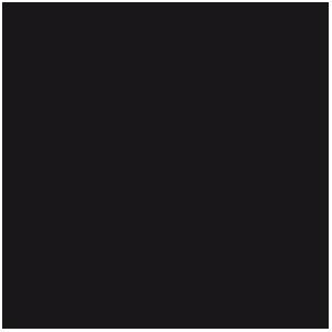 Encre : Noir, Black (17mL)