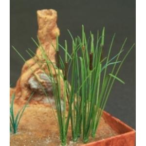 Photo Découpe Papier Plantes de marais (N°2) 1:35