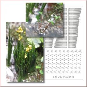 Photo Découpe Plantes Aquatiques 1:72 Assortiment N°2