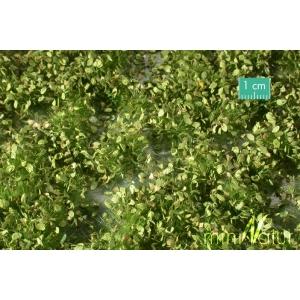 Touffes de mauvaises herbes hautes printemps