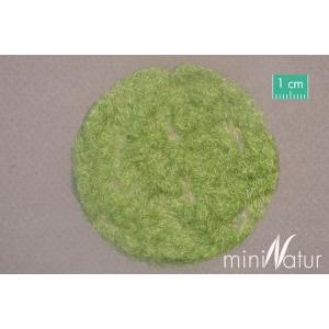 Herbe statique MOYENNE début d'automne (2mm)
