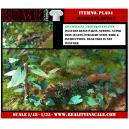 Kit Résine + Photo Découpe Plastique Plantes Jungle (N°4) 1:35