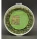 Sol Forestier Vert