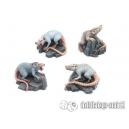 Rats Géants (x4) 28-32mm