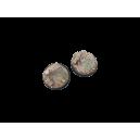 Ruines Grecques/Spartiates 50 mm (x1)