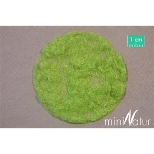 Herbe statique MOYENNE printemps (2mm)