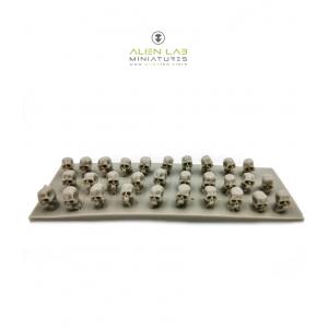 Crânes humains 28-32mm (N°3) (x30)