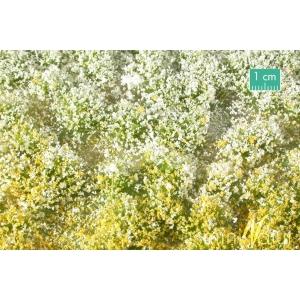 Touffes de fleurs hautes jaunes et blanches