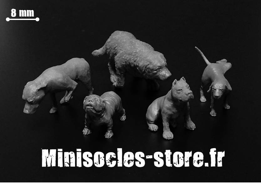 Figurines chiens 28 32mm MINISOCLES