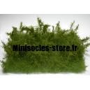 Buissons sauvages Eté