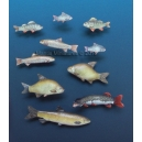 Set de poissons (x10) Echelle 54mm