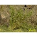 Arbustes 35-45 mm Vert Moyen (x5)