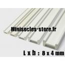 Tige pour poutre métallique 8x4mm