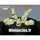 Les petits lapins Grappe 2