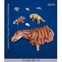 Set d'animaux morts / carcasses (x7) Echelle 54mm